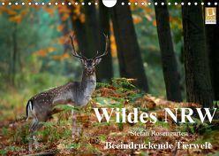 Wildes NRW – Beeindruckende Tierwelt (Wandkalender 2019 DIN A4 quer) von Rosengarten,  Stefan