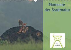 Wildes Ruhrgebiet – Momente der Stadtnatur (Wandkalender 2019 DIN A3 quer) von Ruhrgebiet,  Wildes