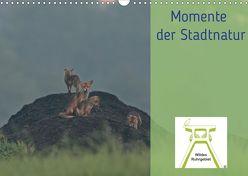 Wildes Ruhrgebiet – Momente der Stadtnatur (Wandkalender 2020 DIN A3 quer) von Ruhrgebiet,  Wildes