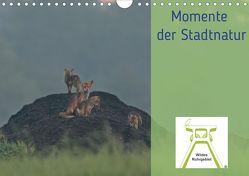 Wildes Ruhrgebiet – Momente der Stadtnatur (Wandkalender 2020 DIN A4 quer) von Ruhrgebiet,  Wildes