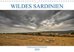 Wildes Sardinien 2020 (Wandkalender 2020 DIN A4 quer) von Fotografie,  ferragosto