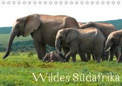 Wildes Südafrika – Lebendiges Kap (Tischkalender 2020 DIN A5 quer) von Stützle