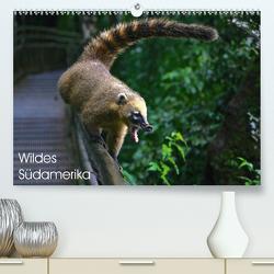 Wildes Südamerika (Premium, hochwertiger DIN A2 Wandkalender 2021, Kunstdruck in Hochglanz) von Herrmann,  Falk