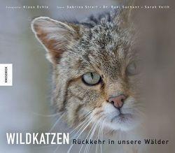 Wildkatzen von Echle,  Klaus, Streif,  Sabrina, Suchant,  Rudi, Veith,  Sarah
