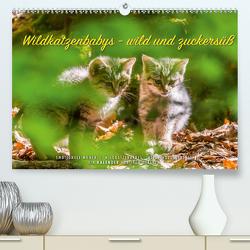 Wildkatzenbabys – wild und zuckersüß. (Premium, hochwertiger DIN A2 Wandkalender 2020, Kunstdruck in Hochglanz) von Gerlach,  Ingo
