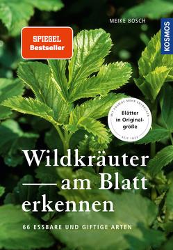 Wildkräuter am Blatt erkennen von Bosch,  Meike