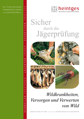 Wildkrankheiten, Versorgen und Verwerten von Wild von Heintges,  Wolfgang, Schmidt,  Klaus, Stegmanns,  Thomas, Steinbach,  Gudrun