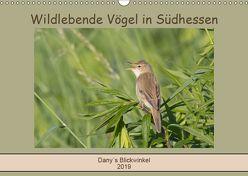Wildlebende Vögel in Südhessen (Wandkalender 2019 DIN A3 quer) von Buß,  Daniela