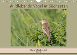 Wildlebende Vögel in Südhessen (Wandkalender 2019 DIN A4 quer) von Buß,  Daniela