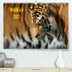 Wildlife II / 2021 (Premium, hochwertiger DIN A2 Wandkalender 2021, Kunstdruck in Hochglanz) von Klingebiel,  Jens