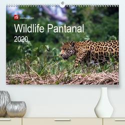 Wildlife Pantanal 2020 (Premium, hochwertiger DIN A2 Wandkalender 2020, Kunstdruck in Hochglanz) von Bergwitz,  Uwe