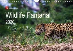Wildlife Pantanal 2020 (Wandkalender 2020 DIN A4 quer) von Bergwitz,  Uwe