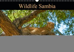 Wildlife Sambia (Wandkalender 2019 DIN A3 quer) von Photo4emotion.com