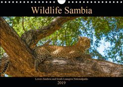Wildlife Sambia (Wandkalender 2019 DIN A4 quer) von Photo4emotion.com