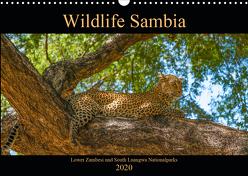 Wildlife Sambia (Wandkalender 2020 DIN A3 quer) von Photo4emotion.com