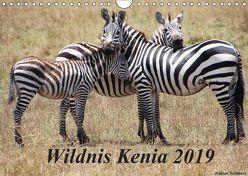 Wildnis Kenia 2019 (Wandkalender 2019 DIN A4 quer) von Schwarz,  Rainer