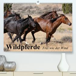 Wildpferde. Frei wie der Wind (Premium, hochwertiger DIN A2 Wandkalender 2021, Kunstdruck in Hochglanz) von Stanzer,  Elisabeth
