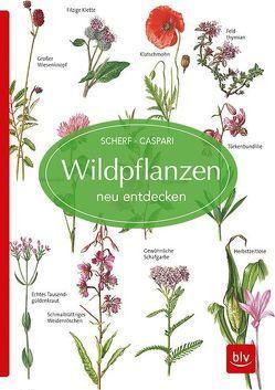 Wildpflanzen neu entdecken von Caspari,  Claus, Scherf,  Gertrud