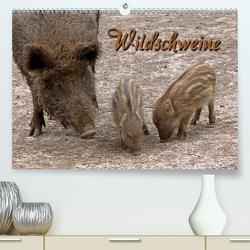 Wildschweine (Premium, hochwertiger DIN A2 Wandkalender 2021, Kunstdruck in Hochglanz) von Berg,  Martina