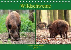 Wildschweine – Tiere aus unseren Wäldern (Tischkalender 2019 DIN A5 quer) von Klatt,  Arno