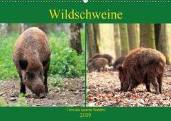 Wildschweine – Tiere aus unseren Wäldern (Wandkalender 2019 DIN A2 quer) von Klatt,  Arno