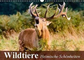 Wildtiere. Heimische Schönheiten (Wandkalender 2018 DIN A3 quer) von Stanzer,  Elisabeth