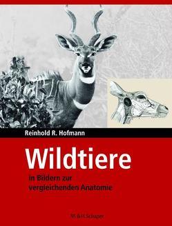 Wildtiere in Bildern zur Vergleichenden Anatome von Hofmann,  Reinhold R