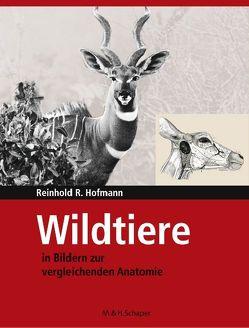 Wildtiere in Bildern zur Vergleichenden Anatomie von Hofmann,  Reinhold R