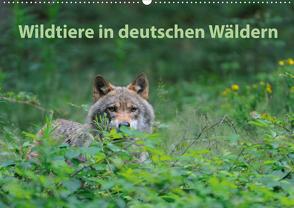 Wildtiere in deutschen Wäldern (Wandkalender 2021 DIN A2 quer) von Jähne,  Karin