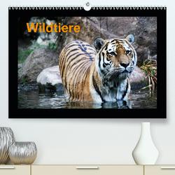 Wildtiere(Premium, hochwertiger DIN A2 Wandkalender 2020, Kunstdruck in Hochglanz) von Knof,  Claudia, www.cknof.de
