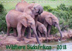 Wildtiere Südafrikas / Geburtstagskalender (Tischkalender 2018 DIN A5 quer) von Beringer,  Robert