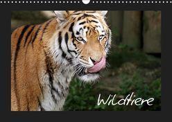 Wildtiere (Wandkalender 2019 DIN A3 quer) von Zeller und Christian Kiedy,  Katrin