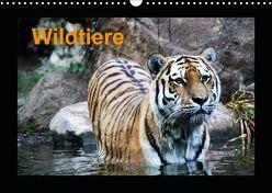 Wildtiere (Wandkalender 2019 DIN A3 quer) von Knof,  Claudia, www.cknof.de,  k.A.
