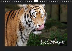 Wildtiere (Wandkalender 2019 DIN A4 quer) von Zeller und Christian Kiedy,  Katrin