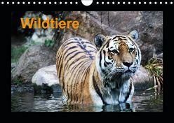 Wildtiere (Wandkalender 2019 DIN A4 quer) von Knof,  Claudia, www.cknof.de,  k.A.