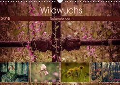Wildwuchs 2019 (Wandkalender 2019 DIN A3 quer) von Drews,  Marianne