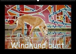 Windhund bunt (Wandkalender 2018 DIN A2 quer) von Köntopp,  Kathrin
