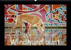 Windhund bunt (Wandkalender 2019 DIN A2 quer) von Köntopp,  Kathrin