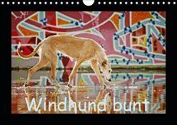 Windhund bunt (Wandkalender 2019 DIN A4 quer) von Köntopp,  Kathrin
