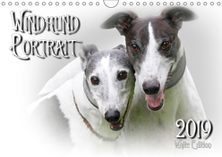 Windhund Portrait 2019 White Edition (Wandkalender 2019 DIN A4 quer) von Redecker,  Andrea