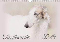 Windhunde 2019 (Wandkalender 2019 DIN A4 quer) von Redecker,  Andrea