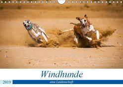 Windhunde – eine Leidenschaft (Wandkalender 2019 DIN A4 quer)