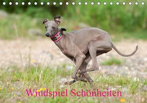Windspiel Schönheiten (Tischkalender 2020 DIN A5 quer) von Joswig,  Angelika