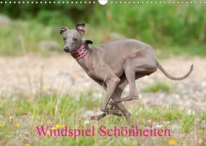 Windspiel Schönheiten (Wandkalender 2020 DIN A3 quer) von Joswig,  Angelika