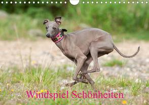 Windspiel Schönheiten (Wandkalender 2020 DIN A4 quer) von Joswig,  Angelika