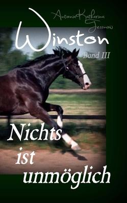 Winston – Nichts ist unmöglich von Tessnow,  Antonia Katharina