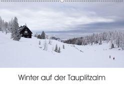 Winter auf der Tauplitzalm (Wandkalender 2018 DIN A2 quer) von Schaefgen,  Matthias