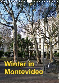 Winter in Montevideo (Wandkalender 2019 DIN A4 hoch) von Kristin von Montfort,  Gräfin