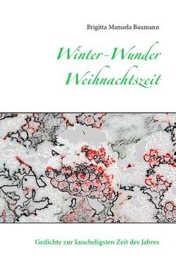 Winter-Wunder-Weihnachtszeit von Baumann,  Brigitta Manuela