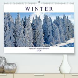 Winter. Zauberhafte Schneelandschaften (Premium, hochwertiger DIN A2 Wandkalender 2020, Kunstdruck in Hochglanz) von Hurley,  Rose